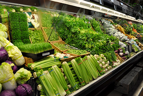 thesis organic farming